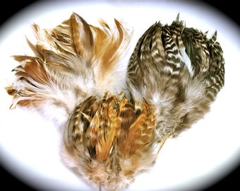 Rooster Feathers Natural Schlappen Mix (60 feathers of each color)