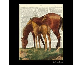 Mare and Colt Horses Vintage Dictionary Art Print Book Page Art Print No. P252