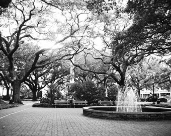 Fine Art Photography- Savannah - Home Decor- Black and White Photograph- Southern Art- Art Print-City Art-8x10-Wall Art-Fountain-Trees-Grey