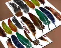 Bird feathers, printable collage sheet, nature, DIY crafting, mixed media, scrapbooking, die cutting, gift package, tag, embellishment, pdf