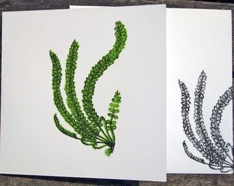 Hand Screen Printed Greetings Card Fern Design