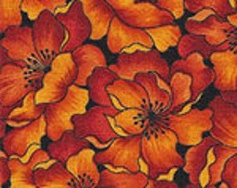 Striking  packed orange and yellow flowers on dark background.
