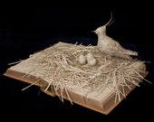 "Photographic Print of Book Sculpture 'World of Birds' 10"" x 8"""