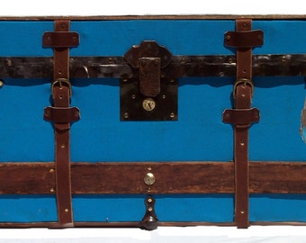 Wall Hanging Trunk Face with Belts