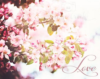 My Love, spring blossoms, pink