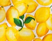 "CUSTOM Lemon fabric 5.5 x 9 inch oval hoop with ""i love lemon"" hand embroidery"