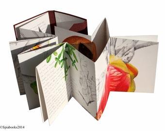CRESCENTIA ALATA. Artist book Illustrated