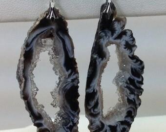Tampa Bay crystal Earrings