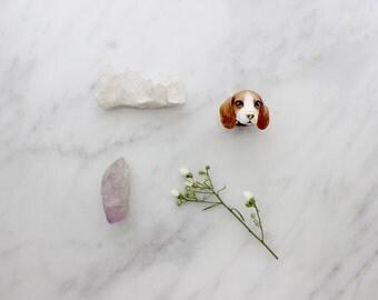 Kanom, Beagle Ring