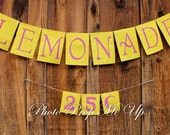 Pink Lemonade Banner Photography Prop