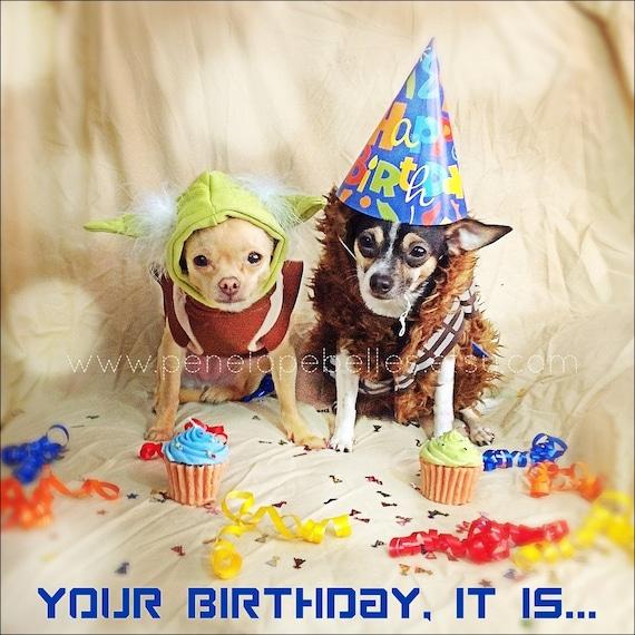 Star Wars Card Dog Card Yoda and Chewbacca Birthday Card – Chewbacca Birthday Card