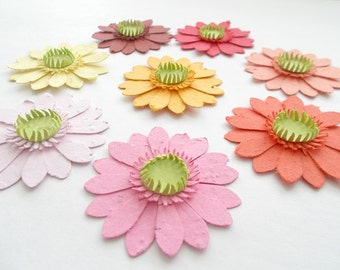 50 Plantable Paper Gerbera Daisies - Eco Friendly Paper Embedded With Flower Seeds - Plant and Grow!
