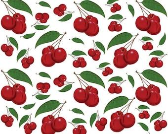 Cherry Bunches Wall Decals Medium Sheet #47627