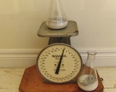 hansonutility scale/vintage scale