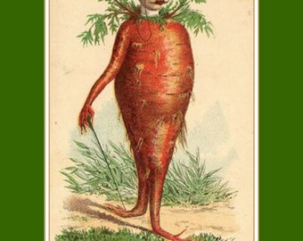 "Pair Vegetable themed prints, Rice's Seeds, Cambridge NY- Pea Pods. JA Summers, Toronto,  Man as Carrot, 11x14"" Cotton"