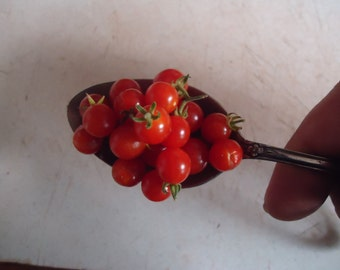 Spoon Tomato Currant style small fruit