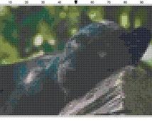 Cross Stitch Pattern Black Panther Cub Cat Instant Download Digital PDF File Wild Baby Animal Cross Stitch Chart