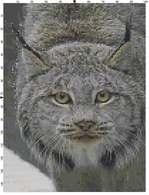 masque digital pdf download cat
