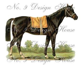 Digital Horse, Digital Vintage Horse, ACEO, Vintage Digital, Digital Collage, Digital Download, Equestrian Digital,Transfer Images,Printable