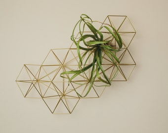Abstract Wall Grid || Modern Minimalist Geometric Hanging Ornament, and Air Plant Holder