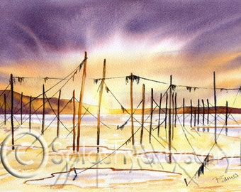 SALMON NETS SUNSET, Scotland,  Art Print Of Original Watercolour Painting from Scottish Artist.