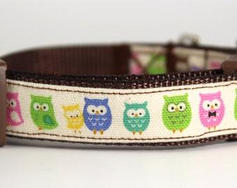 Owl Party Dog Collar
