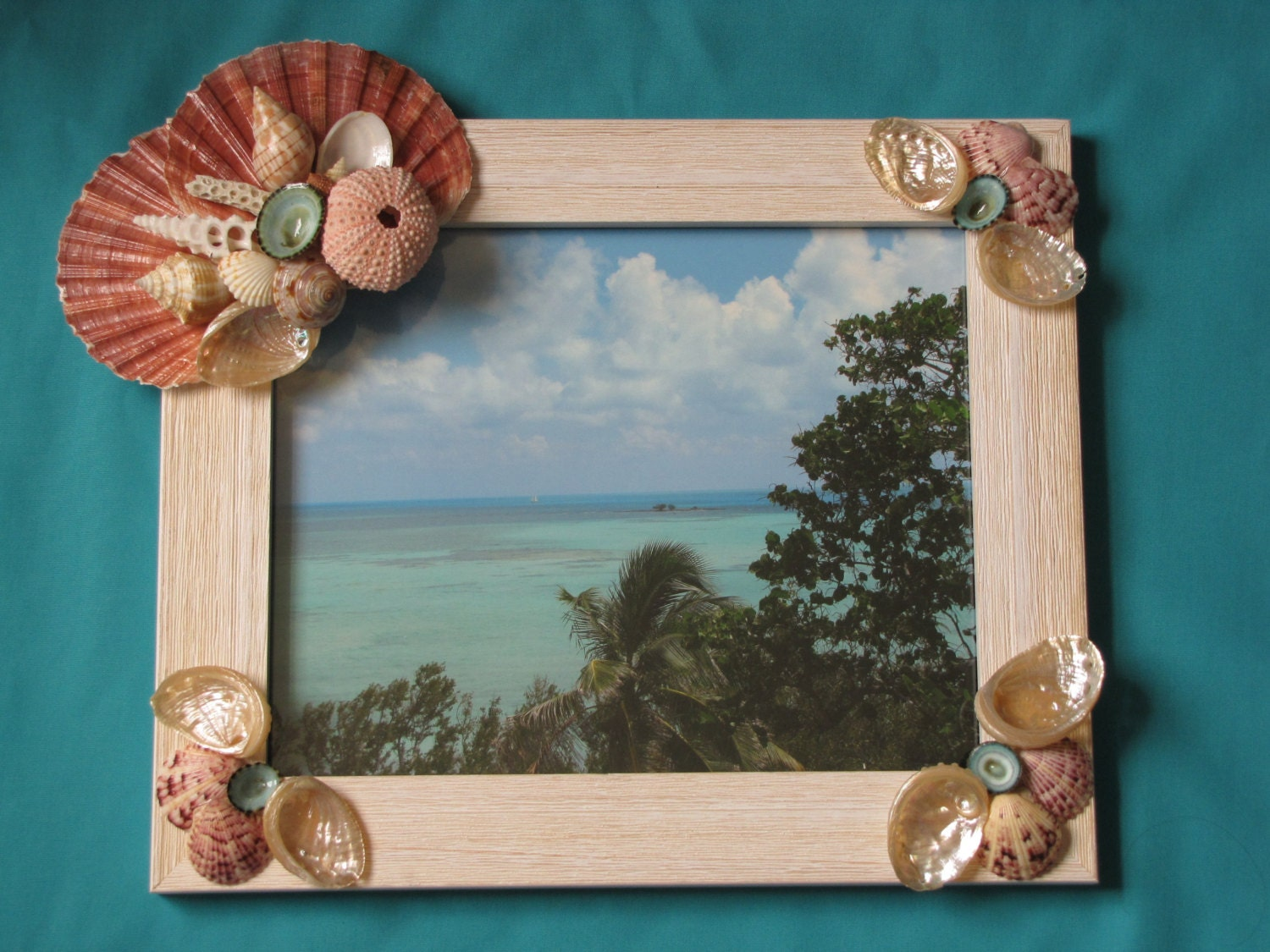 sale seashell photo frame shell picture frame beach decor. Black Bedroom Furniture Sets. Home Design Ideas