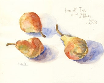 golden pears watercolor - ORIGINAL watercolor and pencil drawing - Pear watercolour, fruits still life by Catalina