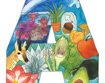 The Letter A : Illustrated Alphabet Print