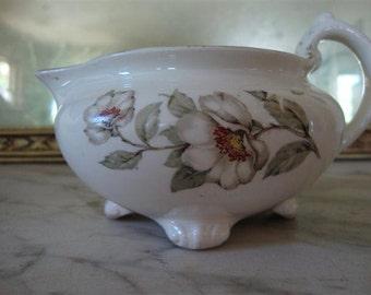 Homer Laughlin Creamer Vintage China Nautilus, Dog Rose, 1951