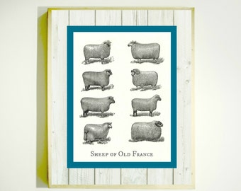 WATER CLOSET SIGN Downloadable Image By LetterboxStudio
