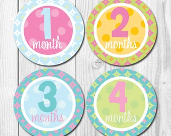 FREE GIFT Monthly Baby Bodysuit Stickers, Baby Girl Monthly Stickers, Baby Month Stickers -Months 1-12, pastel colors