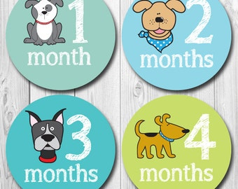 Puppy Monthly Baby Stickers, Dog Baby Month Stickers, Milestone Baby Stickers, Monthly Baby Stickers, Baby Shower Gift, Baby Boy Monthly