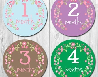 Flower Baby Month Stickers, Monthly Baby Stickers, Tummy Stickers, Milestone Stickers, Baby Month Stickers, Bodysuit Stickers, Girl Monthly