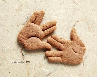 Vulcan salute cookie cutter