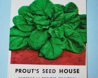 1950s Colourful Spinach Seed Packet