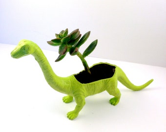 Dinosaur planter- for small plant or succulent.