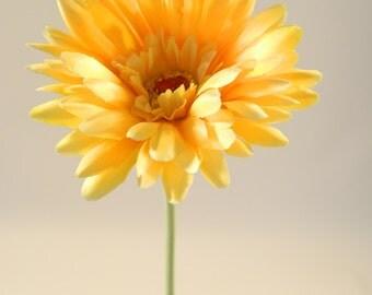 """Gerbera Daisy in Yellow - 24"""" Tall"""