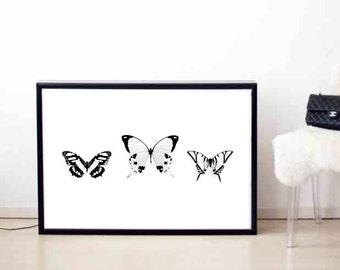 Butterfly print, Butterflies print, Desk print