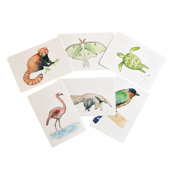 Animal Postcard pack, Watercolor paintings, animal watercolors, pen pal gift, nature stationery, wildlife postcards