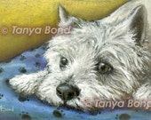Daydreaming westie - West Highland Terrier - 5x7 print of an original painting by Tanya Bond