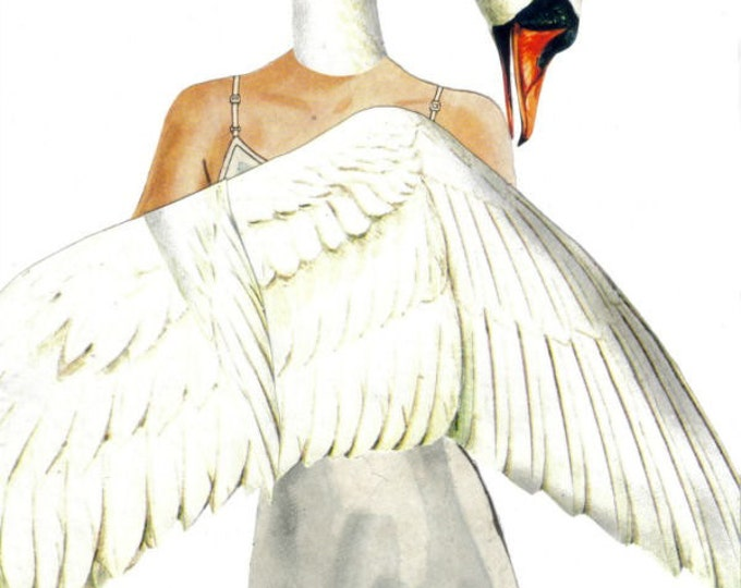 White Swan Art Collage, Fairy Tale Fantasy Bird Artwork