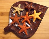 Primitive Fall Star Bowl Filler Decorations