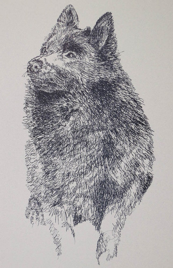 Schipperke dog art portrait drawing from words. Your dog's name added into art FREE. Great gift. Signed Kline 11X17 Lithograph 133/500.