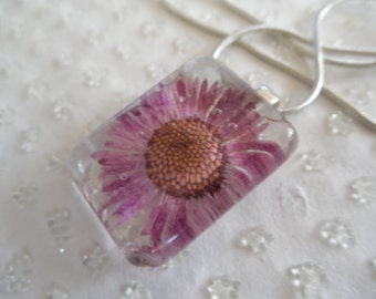 Purple English Daisy Real Pressed Flower Glass Rectangle Pendant-Symbolizes Innocence, Loyal Love, Nature's Wearable Art-Gifts Under 25