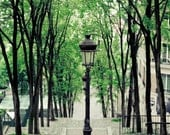 Montmartre, Paris Photography, Green, Spring, Paris Print, Black, Stairs to Sacré Coeur, Paris Bedroom Decor
