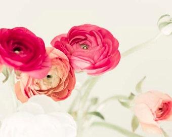 Ranunculus, Pink, Peach, Mint, Flower Photography, Pastel, Girl Nursery Decor, Large Wall Art