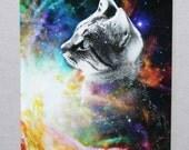 Rainbow Space Kitten Postcard