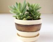 planter Terrarium garden home decor Handmade ceramic planter garden in cream and gold succulent pot