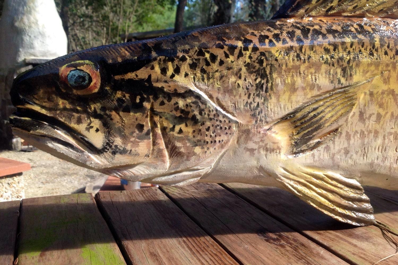 Walleye sculpture chainsaw art wooden freshwater fish